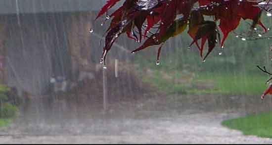 شعر در مورد باران , شعر در مورد باران عاشقانه , شعر در مورد باران از شاعران معروف , شعر در مورد باران پاییزی
