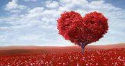 شعر در مورد عشق ، اول به خدا و یک طرفه و زمستان و واقعی و به فرزند