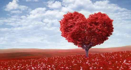 شعر در مورد عشق