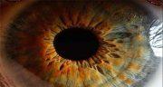 شعر در مورد چشم ، سیاه و یار و سبز + چشم بد دور و چشم آهو و چشم پوشی
