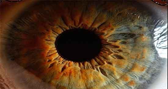 شعر در مورد چشم