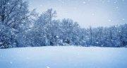 شعر در مورد برف ، باران و زمستان + برف باریدن پاییزی و زمستانی از شاملو