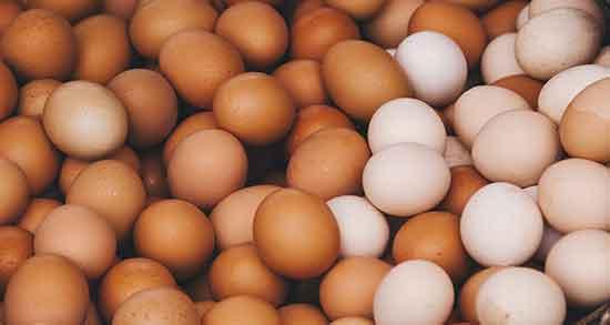 تعبیر خواب تخم مرغ , تعبیر خواب تخم مرغ شکسته , تعبیر خواب تخم مرغ شکستن , تعبیر خواب تخم مرغ دو زرده سفید