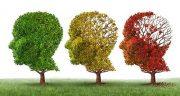 آلزایمر ، علائم و درمان و پیشگیری در سالمندان و جوانی و کودکان چیست ؟ ارثی است
