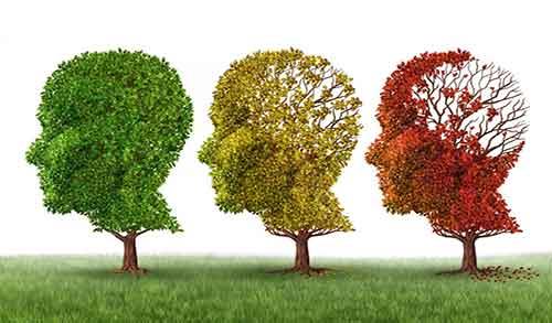 آلزایمر , علائم آلزایمر در سالمندان , علت آلزایمر در جوانی , پیشگیری از آلزایمر کودکان