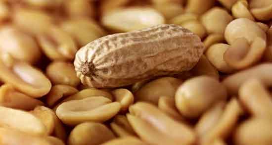 خواص بادام هندی , خواص بادام هندی خام , خواص بادام هندی در کودکان , خواص بادام هندی در بارداری