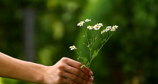 شعر در مورد بخشش و گذشت , شعر در مورد بخشش گذشت , شعر در مورد بخشش دیگران , شعر در مورد بخشش دوست
