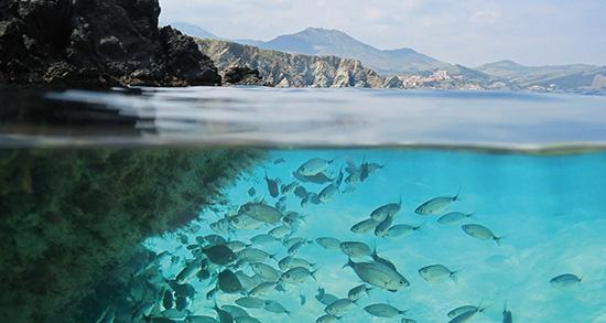 شعر در مورد دریا , شعر در مورد دریاچه ارومیه , شعر در مورد دریاچه , شعر در مورد دریا و عشق