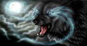 تعبیر خواب گرگ ، سیاه سفید خاکستری قهوه ای زخمی+فرار و حمله و جنگیدن با گرگ