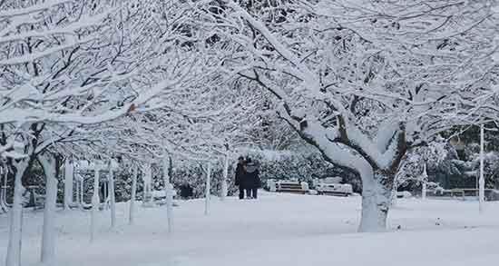 عکس پروفایل زمستانی , عکس پروفایل زمستانی دخترانه , عکس پروفایل زمستانی جدید , عکس پروفایل زمستانی زیبا