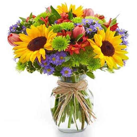 عکس گلهای زیبا برای پروفایل,عکس گلهای زیبای بهاری,عکس گلهای زیبای دنیا