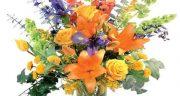 عکس گل ؛ زیبا و رز و مریم و سرخ  عاشقانه و شقایق و عکس گل عشق