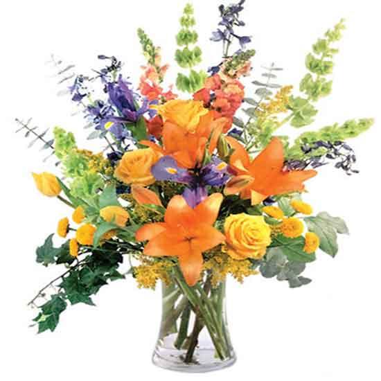 عکس گلهای زیبا برای تولد,عکس گلهای زیبا و عاشقانه,عکس گل نرگس برای پروفایل