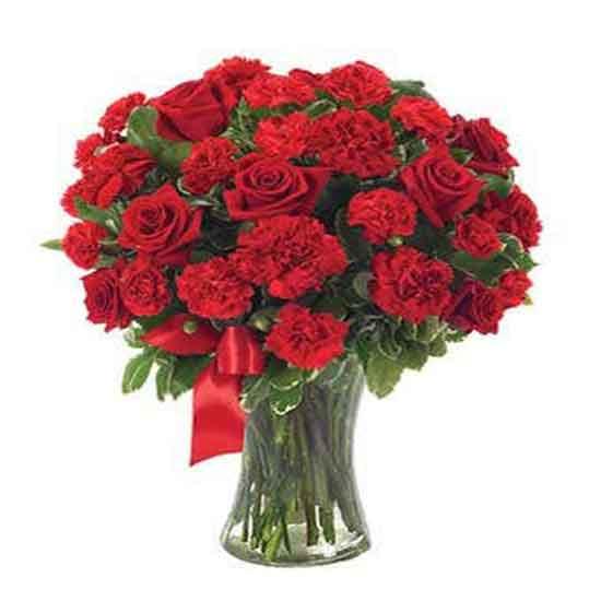 عکس گل عشق,عکس گل رز سفید,عکس گل رز قرمز,عکس گل رز آبی