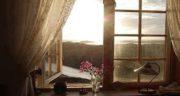 شعر در مورد پنجره ، قدیمی و فولاد و باران و گلدان از شاملو و سهراب سپهری