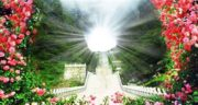 شعر در مورد بهشت ، و جهنم من از مولانا حافظ سعدی و شعر کودکانه بهشت زهرا