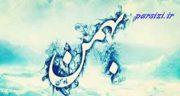 شعر در مورد بهمن ماه ، بهمن ماهی ها و شعر زیبا در مورد زن و مرد متولد بهمن