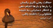 شعر در مورد حماقت ، مردم و بشر از حافظ و سعدی و مولانا و شاملو