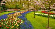 شعر در مورد باغ ، میوه و چای ایرانی و ارم و باغ گل و باغ وحش