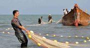 شعر در مورد صید ، ماهی و صیاد و شکار و شکار چی و ماهیگیری