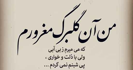 شعر در مورد غرور ، مرد و عشق و زنانه و خودستایی و مغرور بودن از حافظ و مولانا