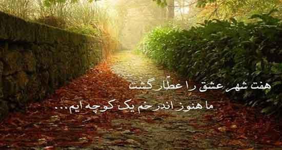شعر در مورد شهر عشق ، از مولانا و حافظ و شعر امید به زندگی از مولانا