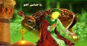 شعر در مورد ضامن آهو ، شعر کودکانه و زیبا در مورد ضامن آهو امام رضا