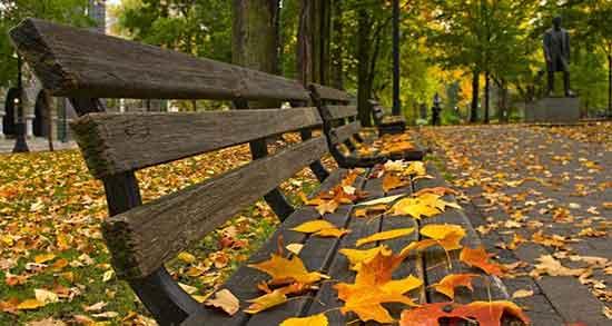 شعر در مورد زیبایی پاییز