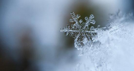 شعر در مورد سرما ، یک بیت شعر در مورد سرمای زمستان و برف از سعدی و سهراب