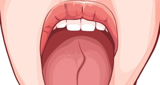 شعر در مورد زبان ، نیش زبان و زبان مادری و خاموشی و زبان خوش از مولانا