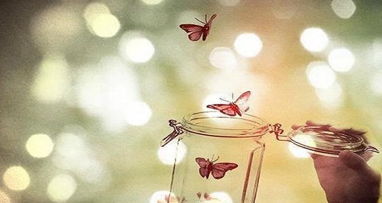 شعر در مورد رهایی ، شعر و متن درباره رهایی و پرواز از مولانا و فروغ و شاملو