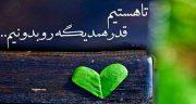 شعر در مورد قدر یکدیگر را دانستن ، قدر همدیگر را دانستن + قدر عشق را بدانیم