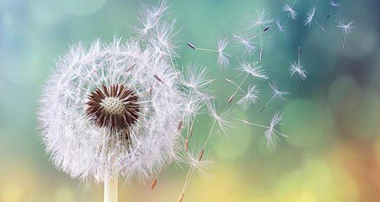 شعر در مورد خاطره ، متن و دلنوشته مرور خاطرات خوش و شیرین قدیمی و گذشته ها