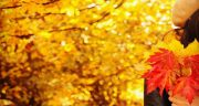 شعر در مورد پاییز مولانا ، شعر دوبیتی و معروف درباره پاییز از سعدی و شهریار