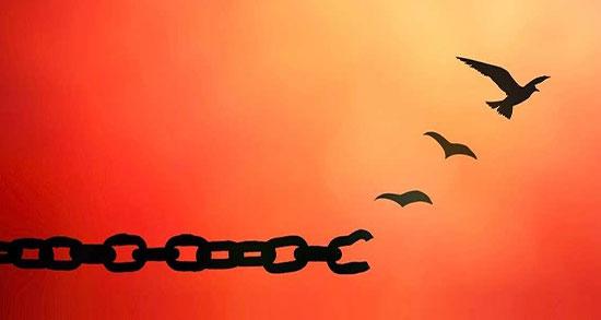 متن کوتاه درباره رهایی ، متن رهایی از قفس و دنیا و پرواز + متن در مورد قوی بودن