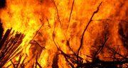 متن در مورد آتش ، متن درباره آتش و شب و چای و پاییز و شعله آتش و گرمای آتش