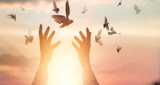 متن در مورد آزادی زندانی ، متن ادبی و کوتاه تبریک آزادی از زندان و رهایی
