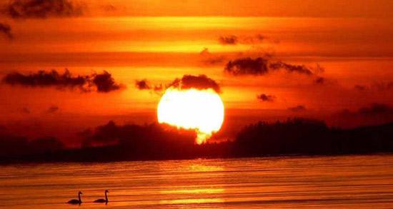 شعر در مورد غروب ، متن ادبی و دوبیتی درباره غروب خورشید از فریدون مشیری