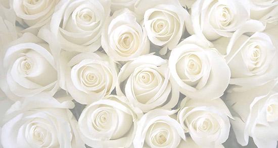 شعر در مورد رنگ سفید ، شعر سیاه و سفید شاملو + لباس و موی سفید و سیاهی