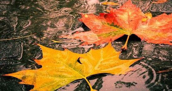 دلنوشته در مورد باران ، کپشن و متن ادبی زیبا درباره قطره باران + باران پاییزی