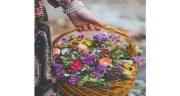 جملات احساسی در مورد گل ، نرگس و سرخ + جملات زیبا درباره بوییدن گل و گیاه