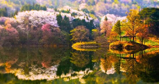 متن زیبا در مورد انعکاس ، آب و زندگی و عشق شاملو + متن درباره آینه و چهره زیبا
