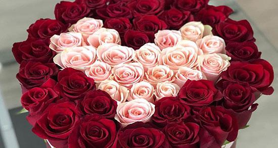 متن عاشقانه هدیه گل ، جملات احساسی و متن فلسفی در مورد بوییدن گل و گیاه