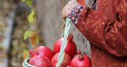 متن زندگی ساده ، روستایی + متن های زیبا و دلنشین در مورد آرامش زندگی