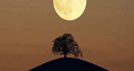 متن درباره ماه شب ، متن ادبی و زیبا در مورد قرص ماه آسمان و ستاره و شب مهتابی