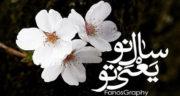 متن زیبا عیدت مبارک ، عشقم + متن زیبا پیشاپیش سال نو مبارک