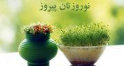 تبریک عید به انگلیسی ، با ترجمه فارسی + تبریک رسمی عید نوروز به زبان انگلیسی