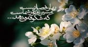 متن عیدت مبارک همسرم ، عیدت مبارک عشق من + نفسم عیدت مبارک