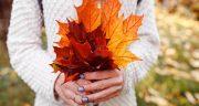 متن در مورد زیبایی پاییز ، و برگ ریزان و پاییز زیبا + متن ادبی زیبا درباره فصل پاییز
