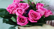 متن زیبا برای تولد همسر ، بهمن ماهی و فروردینی + متن طولانی تبریک تولد همسر